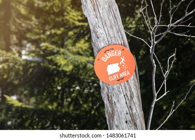 Danger cliff area sign on tree.