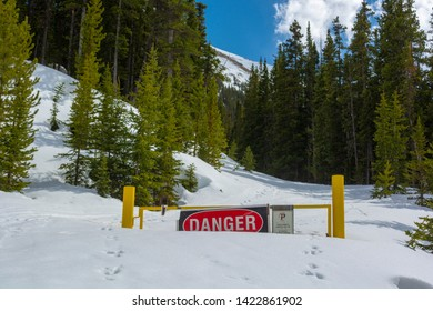 Danger Sign Blocking a Road in a Snowbank in a Mountain Forest