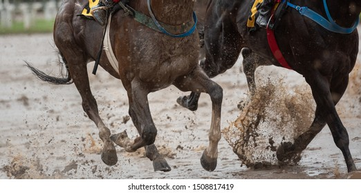 Dangerous horse race at palermo racecourse with bad weather and rain.