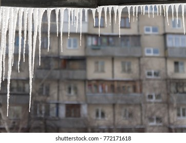 Dangerous icicles hang from the snowy roof of the house. Big icicles in the streets of the winter town.