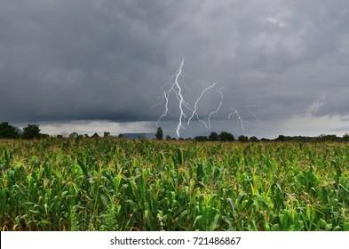 Dangerous thunder and rain storm over corn field