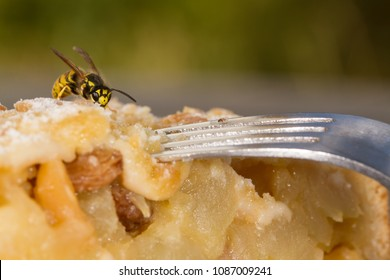 Dangerous Wasp on a cake
