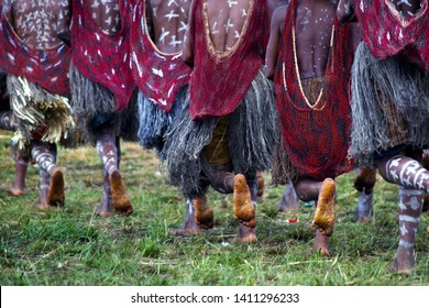 dani people during tribe festival in wamena-baliem valley-papuasia-indonesia