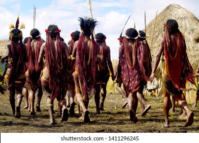 dani people during tribe festival in wamena-baliem valley-papuasia-indonesia