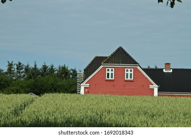 Danish landscapes in the summer  in the Jutland