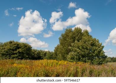 Danish nature
