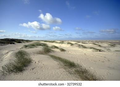 Danish Sand dunes and big beach on island Fanoe.