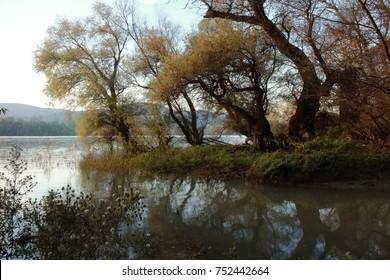Danube bend autmn classical landscape