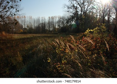 Danube bend autumn landscpe