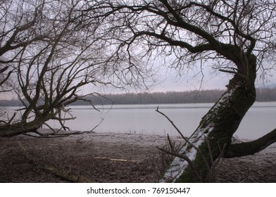 Danube bend winter landscape