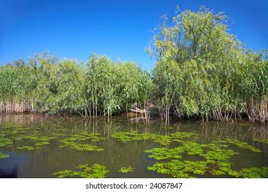 danubian delta landscape