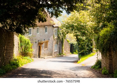 Dappled light with cottages in the background, Melbury Osmond Dorset.