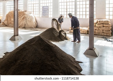 Darjeeling, West Bengal, India, 10-27-2016, Men shoveling ready made tea to remove contaminants in a tea factory