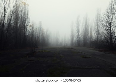 Dark abandoned road in the forest