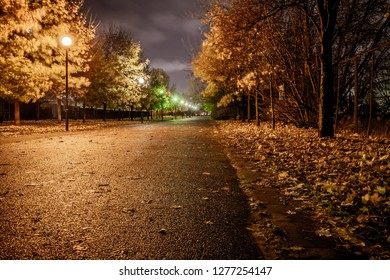 dark alley in the park at night after rain