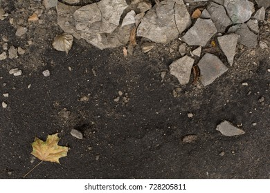 Dark autumn damp ground with pieces of plaster