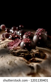 Dark, autumnal, rustic styled dark Belgium Liqueur Chocolates with gelatin chip sprinkles shot with directional light and selective focus against black. Accommodation for copy space.