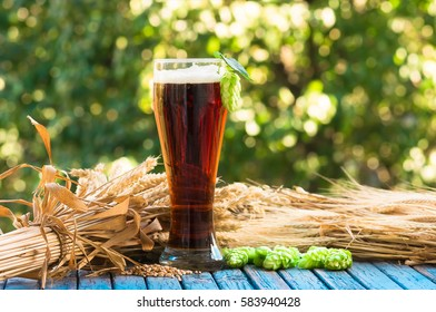 dark beer in a glass,malt, barley ears and cone hop. natural background, alcohol