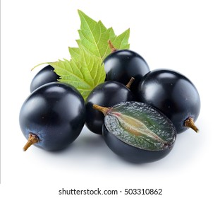 Dark blue grape with leaf isolated on white background.