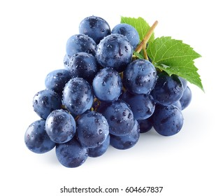Dark blue grape with leaves isolated on white background. Wet fruit. With clipping path. Full depth of field.