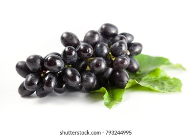 dark blue grape with leaves isolated on white background.