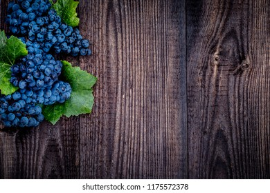 Dark blue grapes on wooden table. New vintage wine background. Cabernet black grape, red wine made from such grapes.