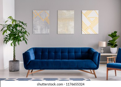 A Dark Blue Velvet Couch In Front Of A Gray Wall With Graphic Paintings In A