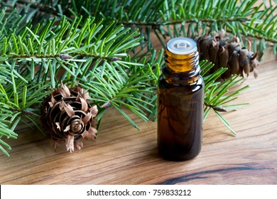 A dark bottle of Douglas fir essential oil with young Douglas fir branches