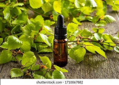 A dark bottle of essential oil with fresh birch branches
