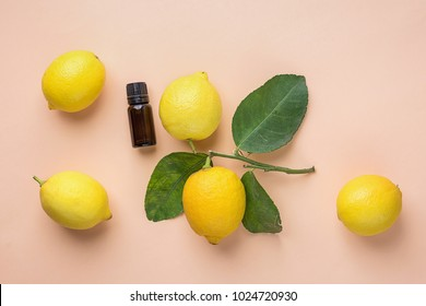 Dark Brown Bottle with Essential Oil Ripe Lemons on Branch with Green Leaves on Peachy Pink Background. Ayurveda Skin Body Care Organic Cosmetics Concept. Styled Image for Blog Product Branding