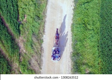 Dark brown horse pulling a Carriage with people on a dirt path surrounded by lush green pasture - Top down aerial image.