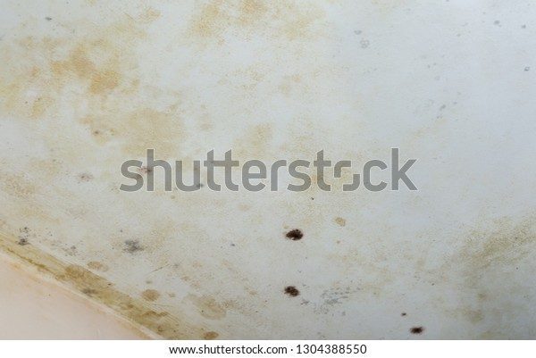 Dark brown with yellow mold stains and spots on a white wall. Toxic fungus infestation in a house causing health problems, air pollution and water infiltration. Damp corner.
