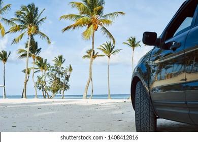 Dark car on the ocean island with palm trees blue sky
