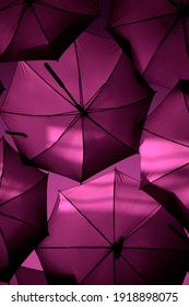 Dark and clear pink umbrellas flying in the sky. Decoration by colorful umbrella over the street. Modern frame texture, unique pattern. Two tone pink colorful background.  Powerful colors