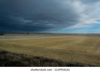 Dark clouds over gold field