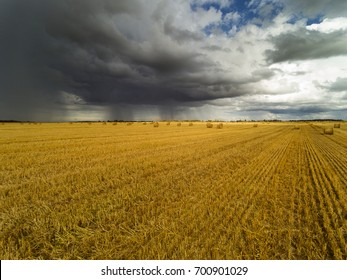 Dark clouds over land in summer afternoon, Tukums area, Latvia.