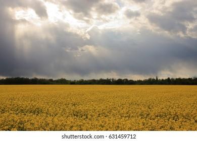 dark clouds over raps field