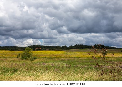 Dark clouds over the summer fields