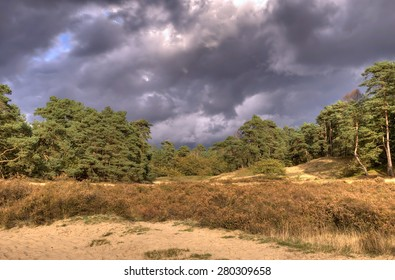 dark clouds over woods landscape in Veluwe, The Netherlands