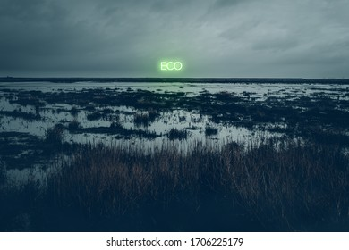 Dark coastal landscape with water and reeds with a green Neon light font eco
