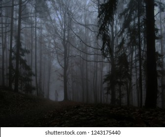 Dark creepy foggy forest, man in dark clothes on the road surrounded by gloomy fantasy landscape. Silence and calm, dreaming,loneliness. Autumn,november. Composite photo.