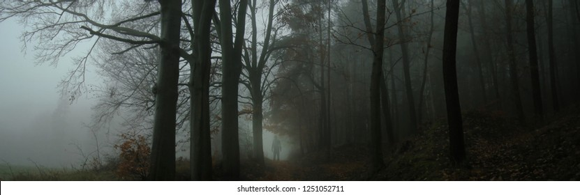 Dark creepy foggy forest, man in dark clothes on the road surrounded by gloomy magical landscape. Autumn,november evening, South Moravia, Eastern Europe. Composite photo.