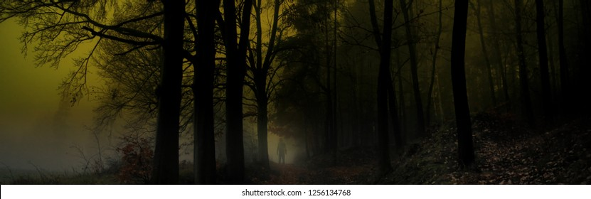 Dark creepy foggy forest, man in dark clothes on the road surrounded by gloomy magical landscape. Late autumn/fall,november evening, South Moravia, Eastern Europe. Composite photo.