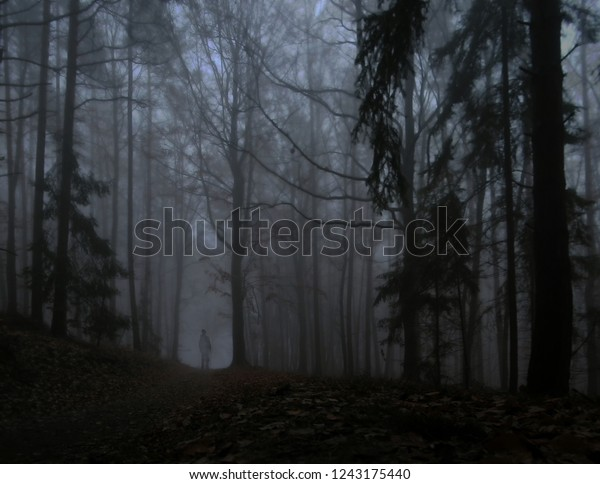 Dark Creepy Foggy Forest Man Dark Stock Photo Edit Now