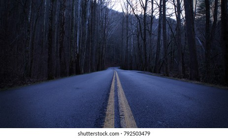 Dark and Depressing Street Photography of a Mountain Road in the Empty Forest.