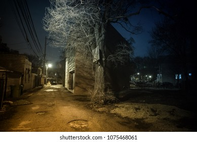 Dark and eerie urban city alley with a dramatic tree and a vintage industrial building at night