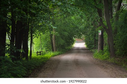 Dark empty mysterious alley (single lane rural road) through the green deciduous trees. Idyllic landscape. Natural tunnel. Bicycle, sport, nordic walking, ecotourism, environment, ecology, nature