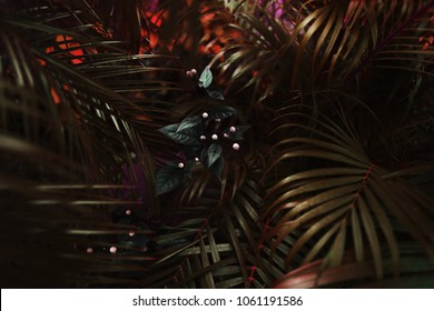 dark exotic fantastic portrait of red palm leaves and flower. concept of travel, phone or laptop wallpaper background