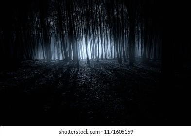 dark fantasy forest halloween background