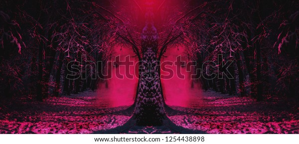 Dark Fantasy Wallpaper Mysterious Fairy Forest Stock Photo Edit